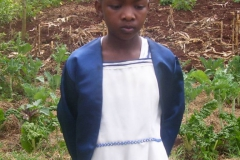 Mercy v roce 2007